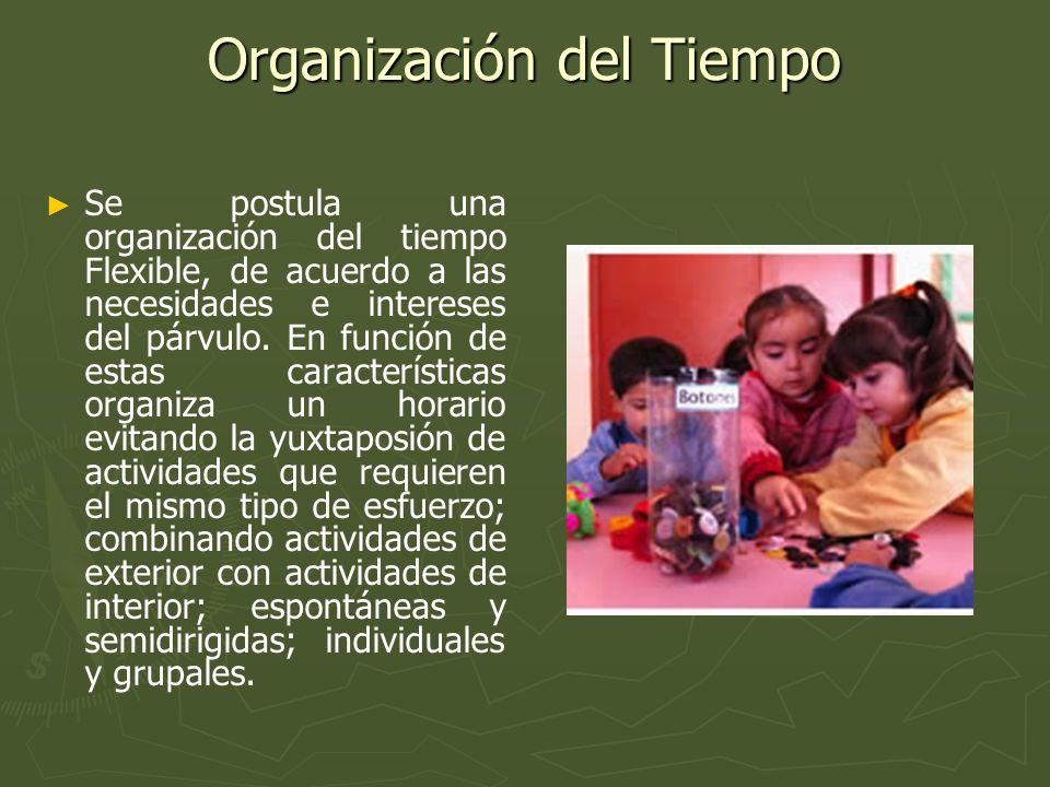 Organización de los niños En relación a la organización global del Jardín Infantil se postula un agrupamiento flexible de los niños.