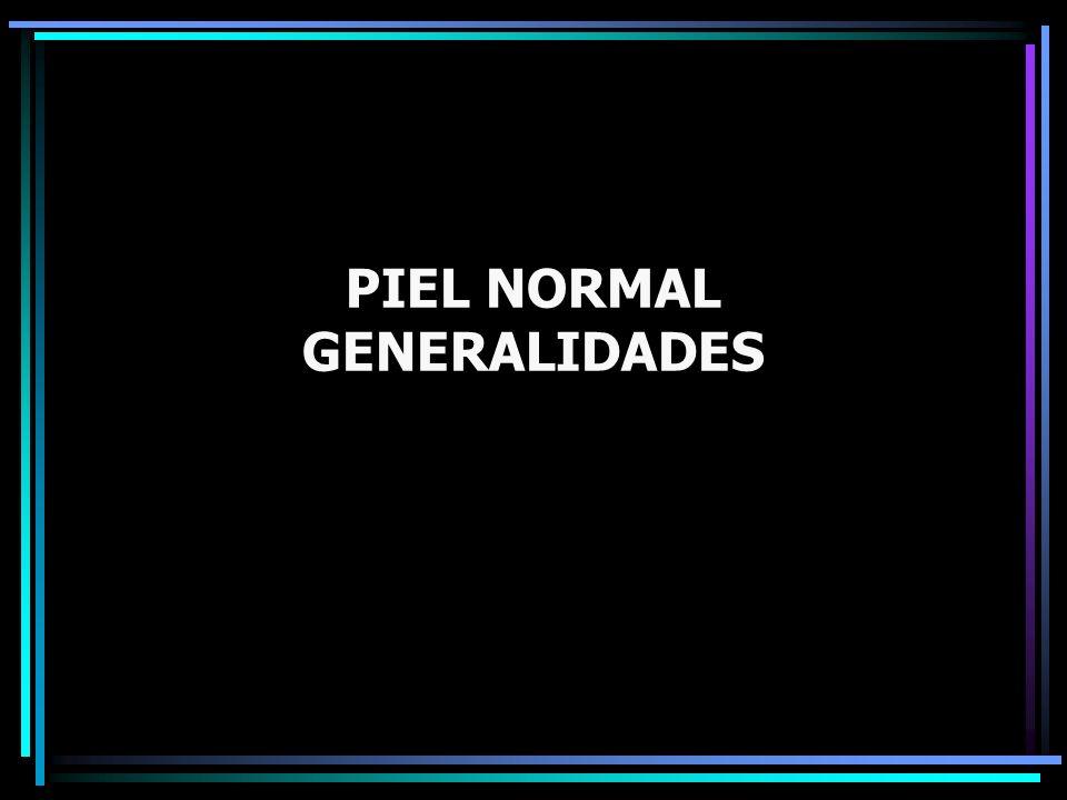 PIEL NORMAL GENERALIDADES