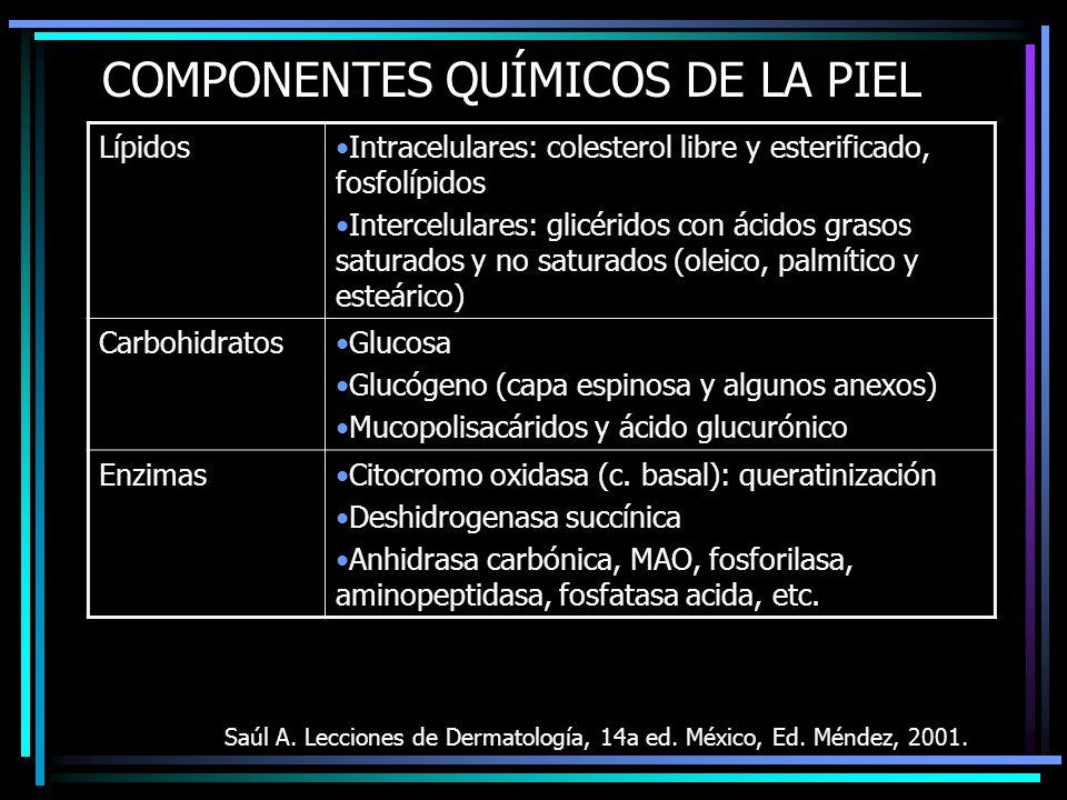COMPONENTES QUÍMICOS DE LA PIEL Saúl A. Lecciones de Dermatología, 14a ed. México, Ed. Méndez, 2001. LípidosIntracelulares: colesterol libre y esterif