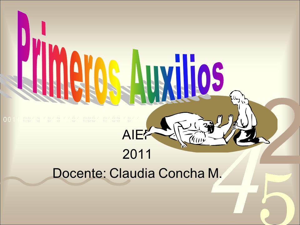 AIEP 2011 Docente: Claudia Concha M.