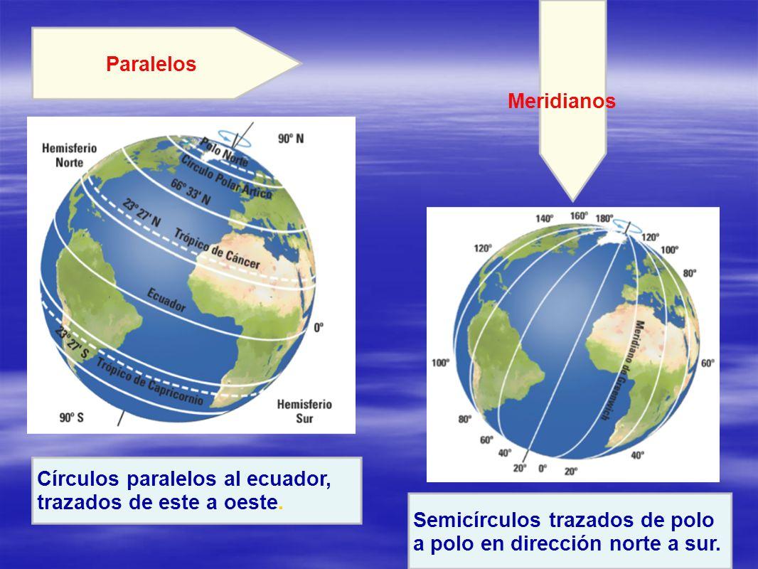 Meridianos Semicírculos trazados de polo a polo en dirección norte a sur. Paralelos Círculos paralelos al ecuador, trazados de este a oeste.