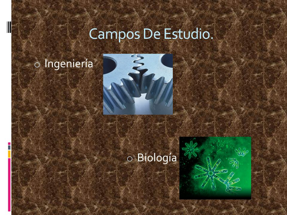 Campos De Estudio. o Ingeniería o Biología