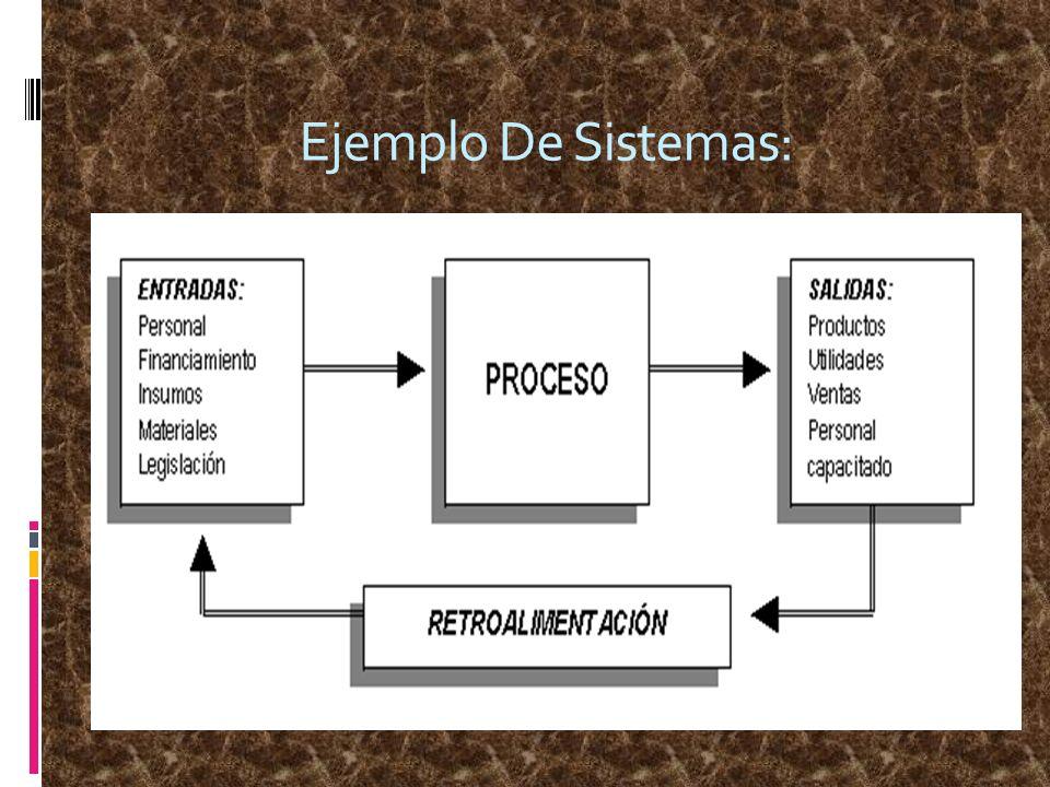 Ejemplo De Sistemas: