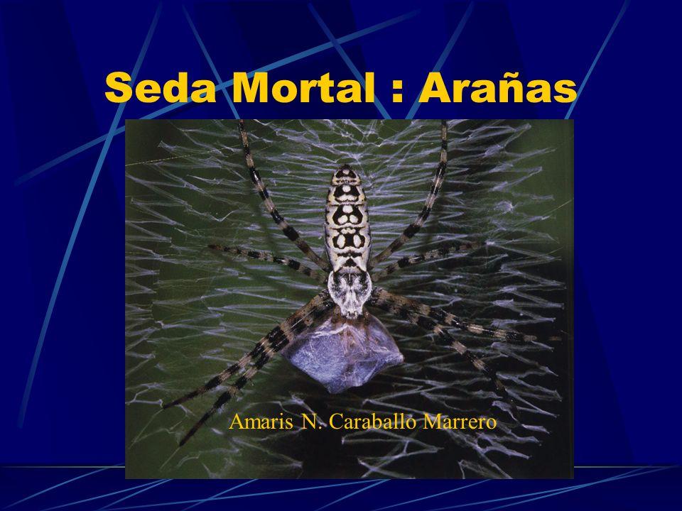 Seda Mortal : Arañas Amaris N. Caraballo Marrero