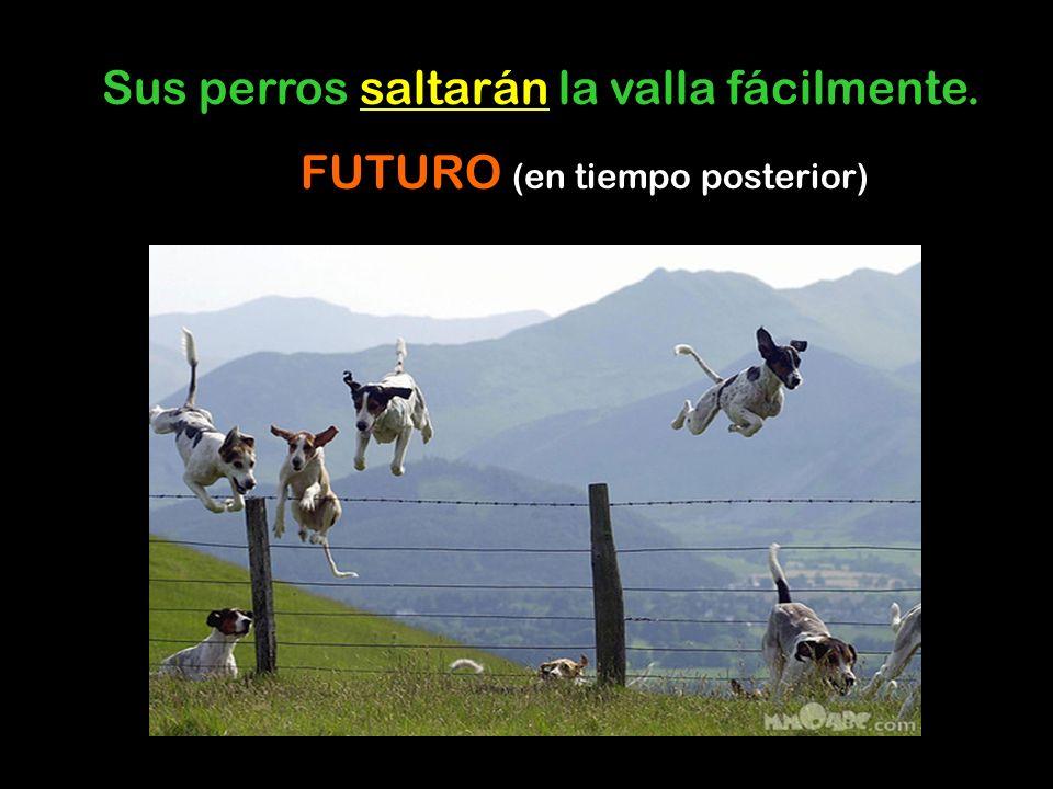 Sus perros saltarán la valla fácilmente. FUTURO (en tiempo posterior)