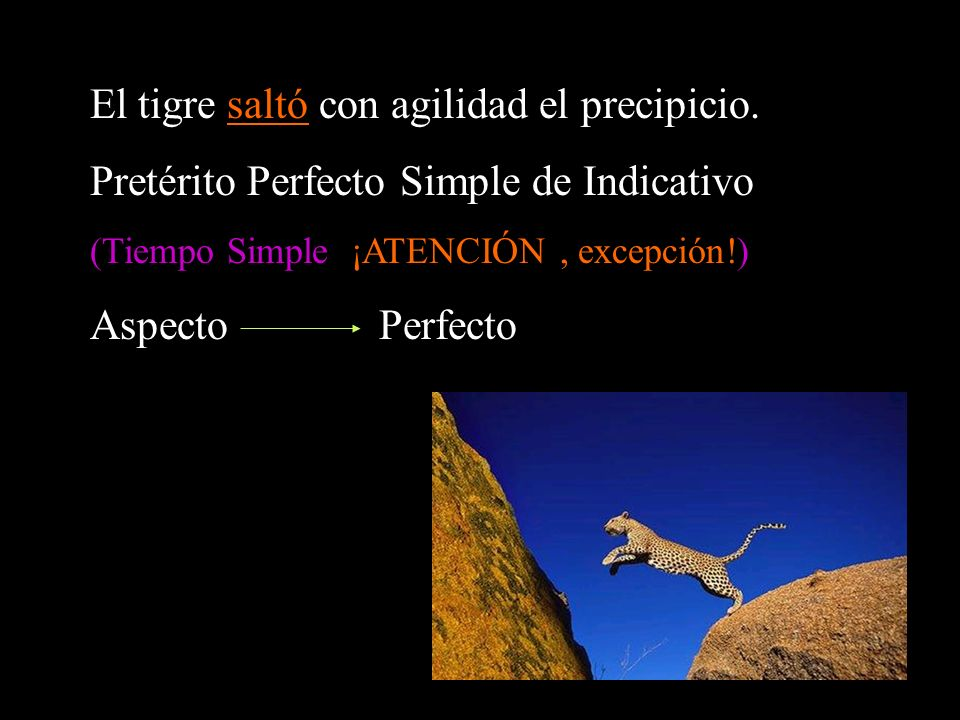 El tigre saltó con agilidad el precipicio. Pretérito Perfecto Simple de Indicativo (Tiempo Simple ¡ATENCIÓN, excepción!) Aspecto Perfecto