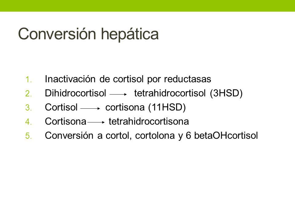 Conversión hepática 1. Inactivación de cortisol por reductasas 2. Dihidrocortisol tetrahidrocortisol (3HSD) 3. Cortisol cortisona (11HSD) 4. Cortisona
