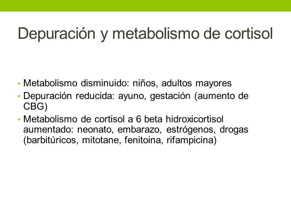 Depuración y metabolismo de cortisol Metabolismo disminuido: niños, adultos mayores Depuración reducida: ayuno, gestación (aumento de CBG) Metabolismo