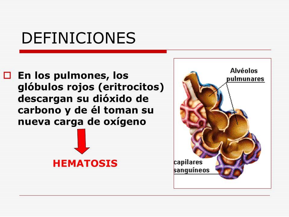 DEFINICIONES En los pulmones, los glóbulos rojos (eritrocitos) descargan su dióxido de carbono y de él toman su nueva carga de oxígeno HEMATOSIS