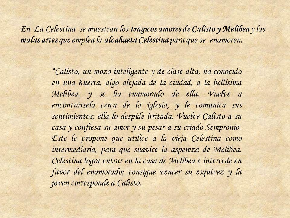 Calisto, un mozo inteligente y de clase alta, ha conocido en una huerta, algo alejada de la ciudad, a la bellísima Melibea, y se ha enamorado de ella.