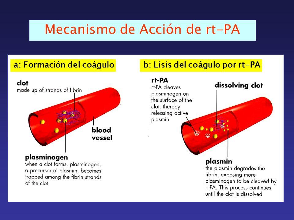Mecanismo de Acción de rt-PA a: Formación del coágulob: Lisis del coágulo por rt-PA