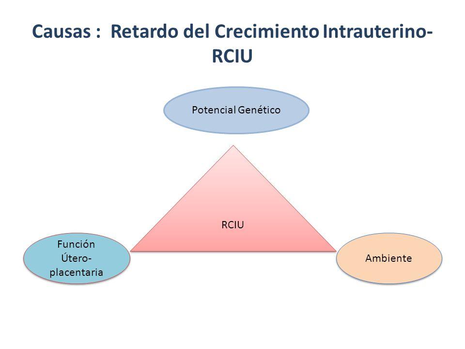 RCIU Causas : Retardo del Crecimiento Intrauterino- RCIU Potencial Genético Función Útero- placentaria Ambiente