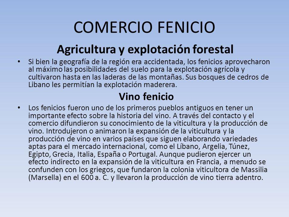 COMERCIO FENICIO Agricultura y explotación forestal Si bien la geografía de la región era accidentada, los fenicios aprovecharon al máximo las posibil