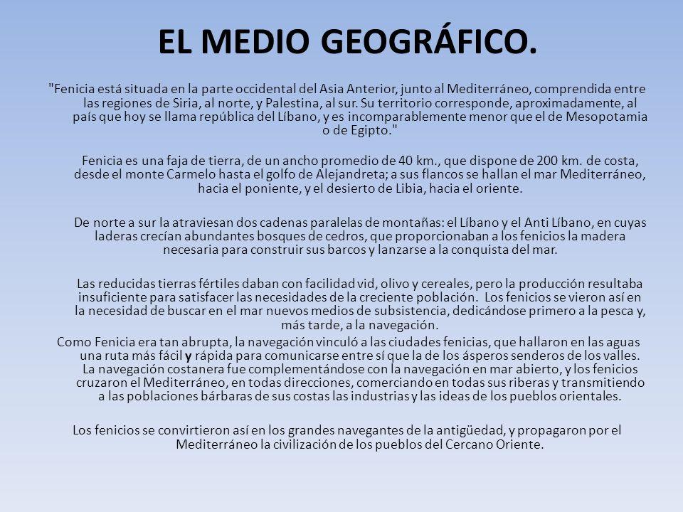 EL MEDIO GEOGRÁFICO.