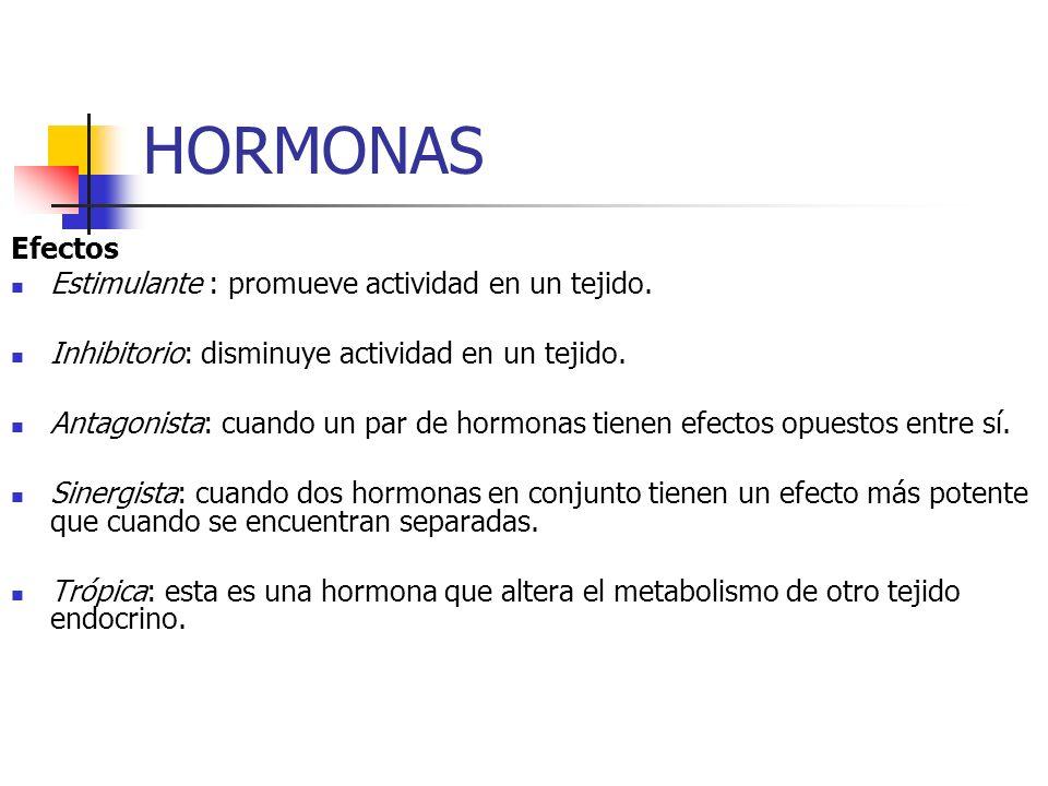 HORMONAS Efectos Estimulante : promueve actividad en un tejido. Inhibitorio: disminuye actividad en un tejido. Antagonista: cuando un par de hormonas