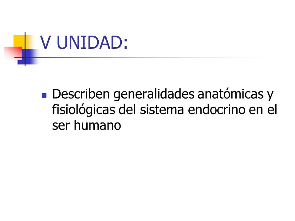 V UNIDAD: Describen generalidades anatómicas y fisiológicas del sistema endocrino en el ser humano