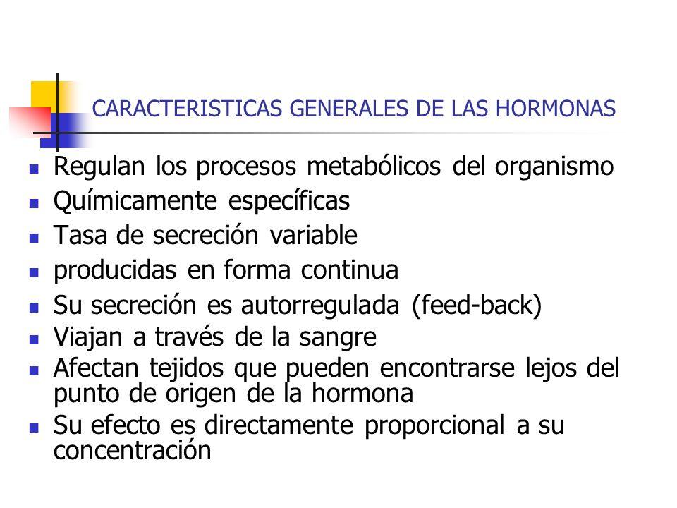 CARACTERISTICAS GENERALES DE LAS HORMONAS Regulan los procesos metabólicos del organismo Químicamente específicas Tasa de secreción variable producida