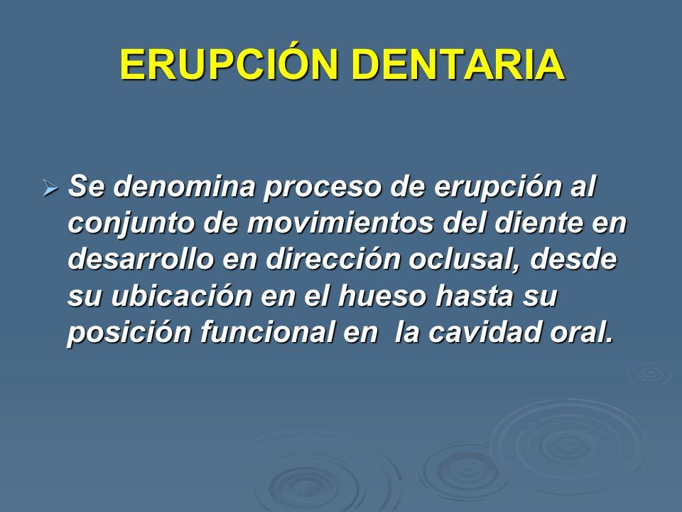 Se denomina proceso de erupción al conjunto de movimientos del diente en desarrollo en dirección oclusal, desde su ubicación en el hueso hasta su posi