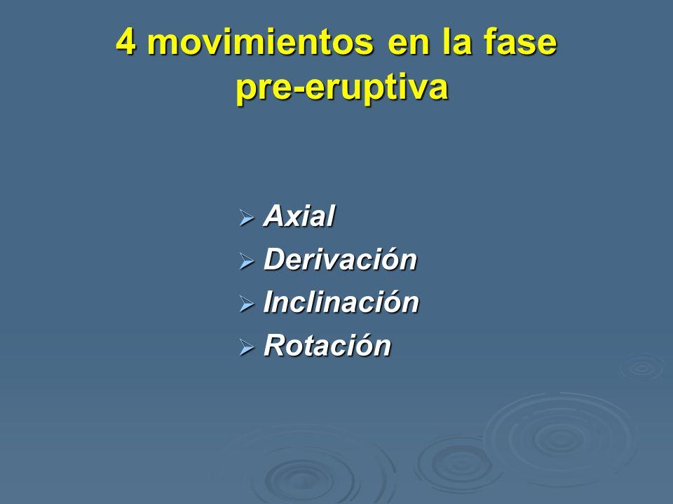 4 movimientos en la fase pre-eruptiva Axial Axial Derivación Derivación Inclinación Inclinación Rotación Rotación