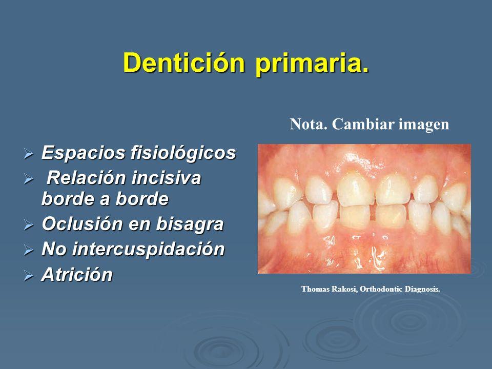 Dentición primaria. Espacios fisiológicos Espacios fisiológicos Relación incisiva borde a borde Relación incisiva borde a borde Oclusión en bisagra Oc