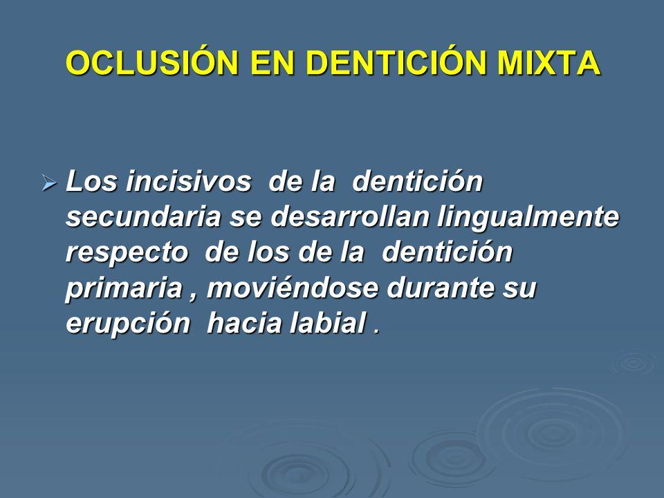 OCLUSIÓN EN DENTICIÓN MIXTA Los incisivos de la dentición secundaria se desarrollan lingualmente respecto de los de la dentición primaria, moviéndose