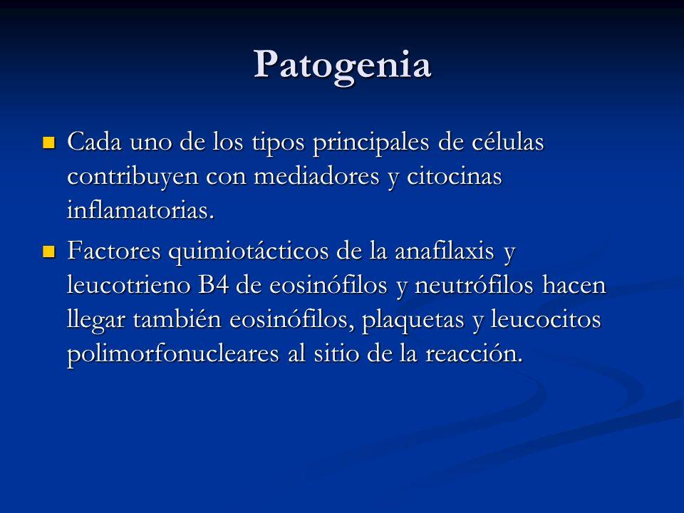 Patogenia Cada uno de los tipos principales de células contribuyen con mediadores y citocinas inflamatorias. Cada uno de los tipos principales de célu