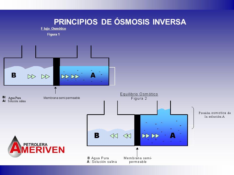 PRINCIPIOS DE ÓSMOSIS INVERSA BA B: Agua Pura A: Solución salina Membrana semi permeable BABA Agua Pura F lujo Osmótico Figura 1