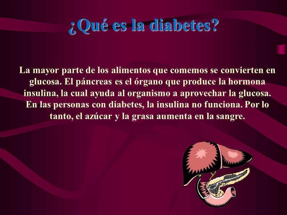 ¿Qué es la diabetes? La mayor parte de los alimentos que comemos se convierten en glucosa. El páncreas es el órgano que produce la hormona insulina, l