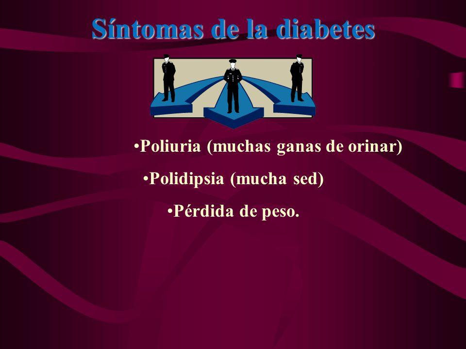 Síntomas de la diabetes Poliuria (muchas ganas de orinar) Polidipsia (mucha sed) Pérdida de peso.