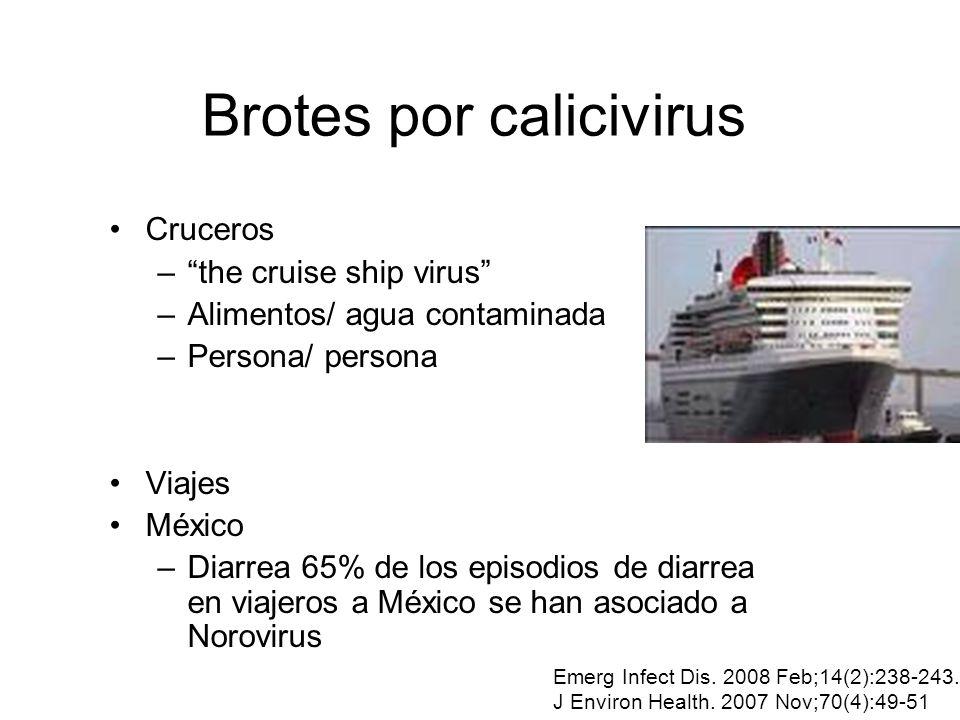 Brotes por calicivirus Cruceros –the cruise ship virus –Alimentos/ agua contaminada –Persona/ persona Viajes México –Diarrea 65% de los episodios de d