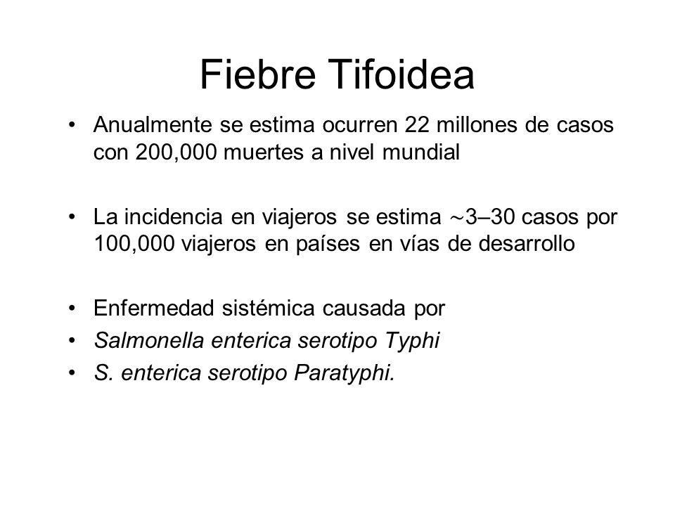 Fiebre Tifoidea Anualmente se estima ocurren 22 millones de casos con 200,000 muertes a nivel mundial La incidencia en viajeros se estima 3–30 casos p