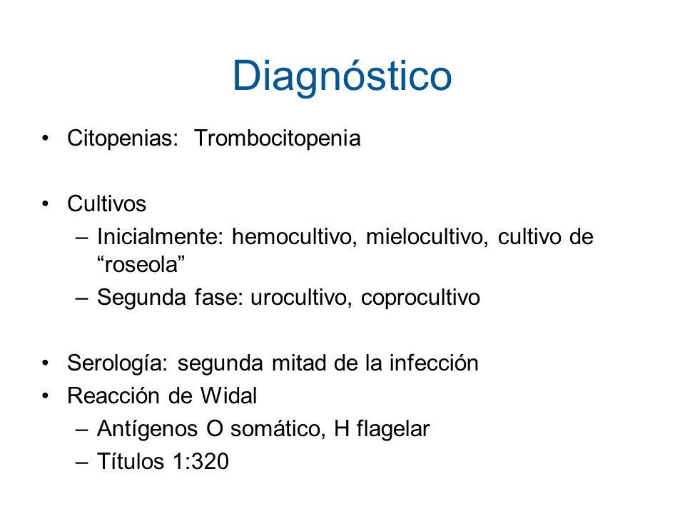 Diagnóstico Citopenias: Trombocitopenia Cultivos –Inicialmente: hemocultivo, mielocultivo, cultivo de roseola –Segunda fase: urocultivo, coprocultivo