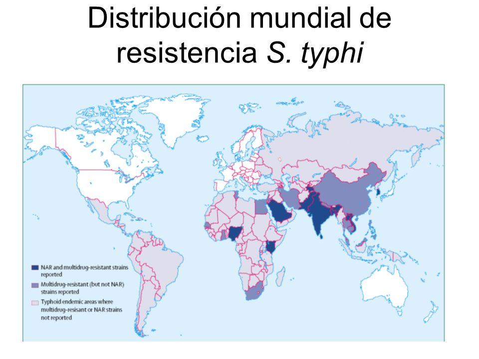 Distribución mundial de resistencia S. typhi