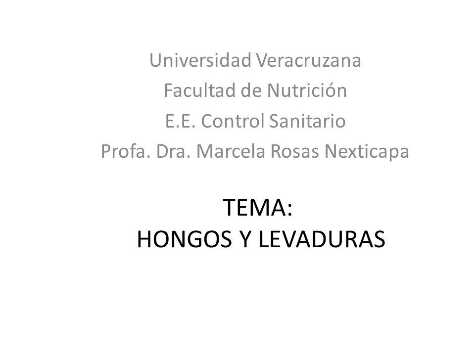Diferencias entre hongos y bacteriasCaracterísticasHongosBacterias Tamaño Levaduras: 20-50 Mohos no definibles a causa de su tamaño indefinido y de sus formas, pero mucho mayores que las levaduras.