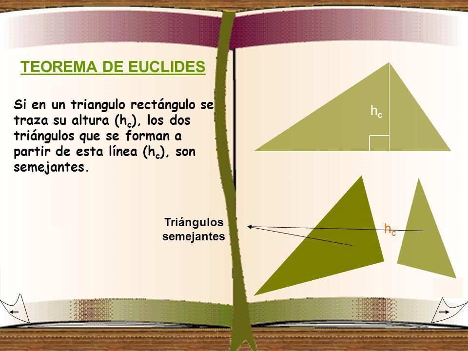 TEOREMA DE EUCLIDES Si en un triangulo rectángulo se traza su altura (h c ), los dos triángulos que se forman a partir de esta línea (h c ), son semej