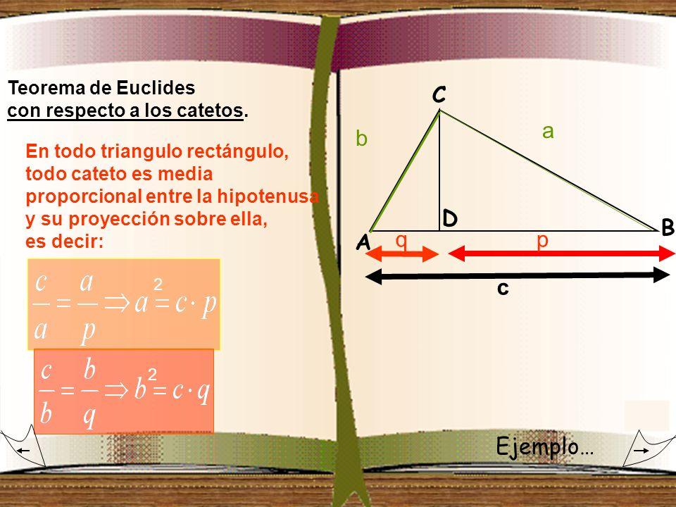 Teorema de Euclides con respecto a los catetos. qp a b c 2 2 En todo triangulo rectángulo, todo cateto es media proporcional entre la hipotenusa y su