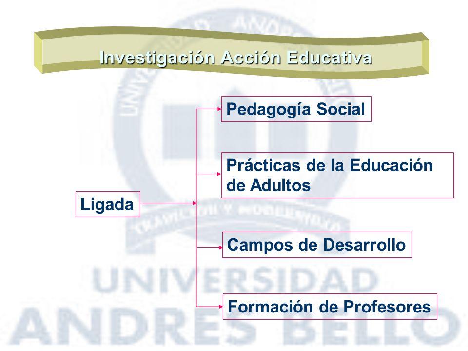 Investigación Acción Educativa Ligada Pedagogía Social Campos de Desarrollo Prácticas de la Educación de Adultos Formación de Profesores