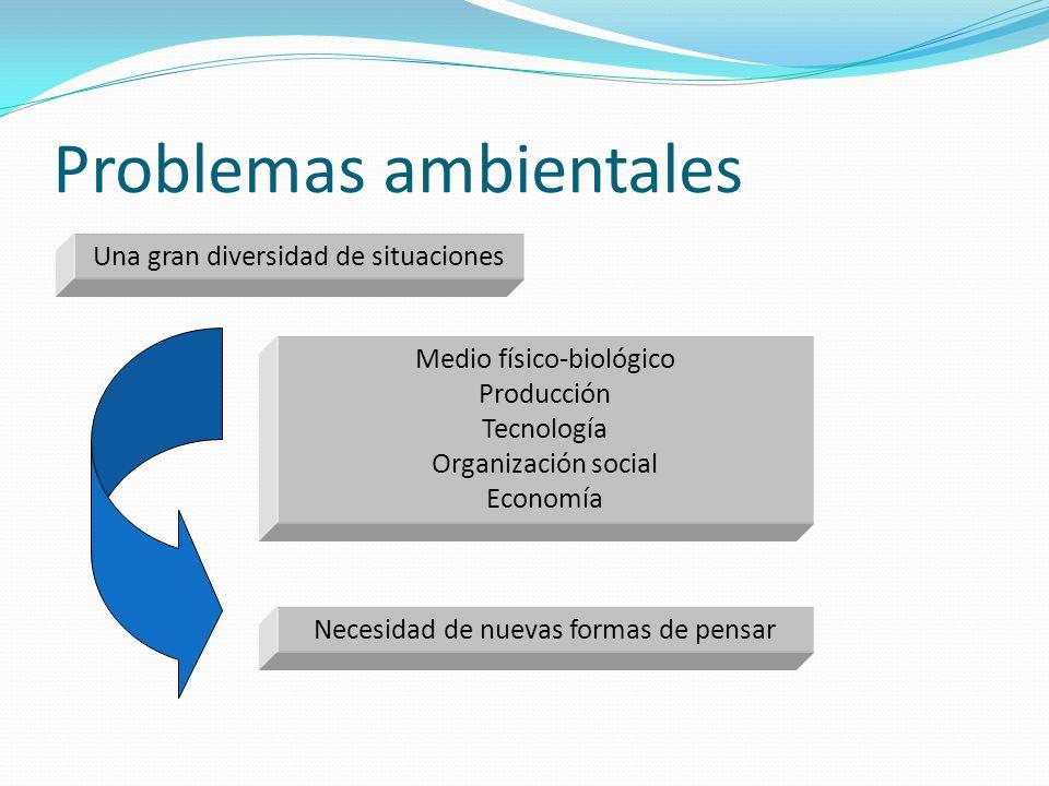 Problemas ambientales Medio físico-biológico Producción Tecnología Organización social Economía Una gran diversidad de situaciones Necesidad de nuevas
