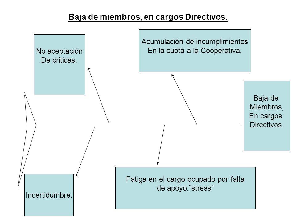 Baja de miembros, en cargos Directivos. Baja de Miembros, En cargos Directivos. Acumulación de incumplimientos En la cuota a la Cooperativa. Fatiga en