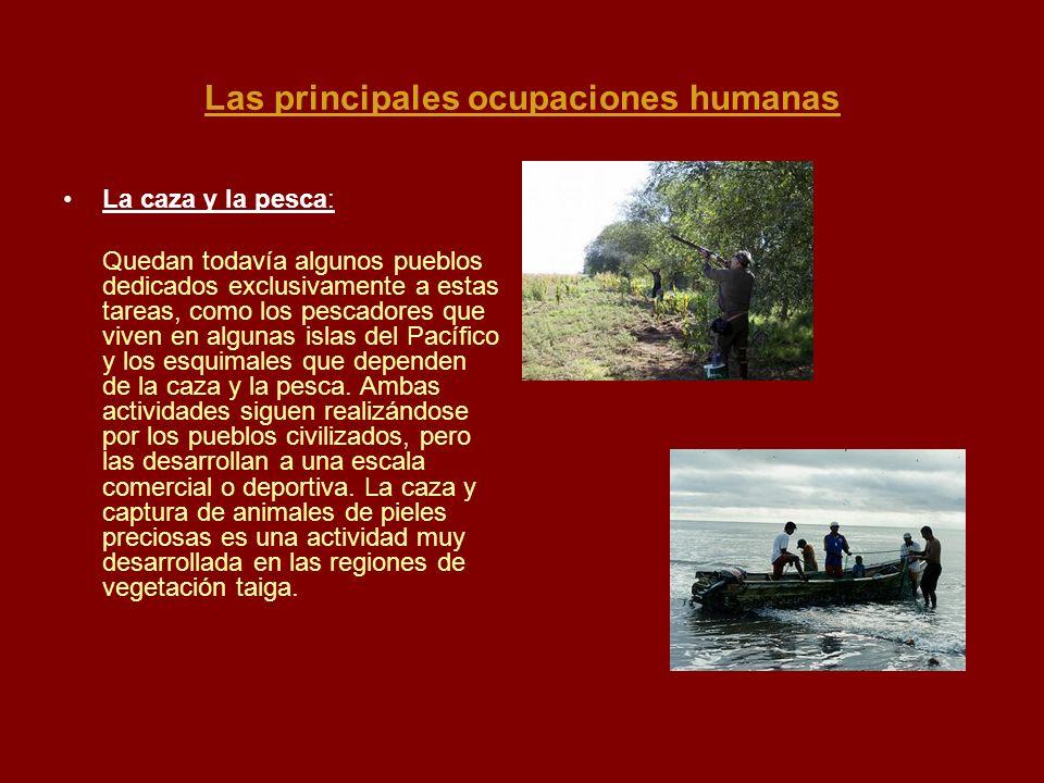 Las principales ocupaciones humanas La caza y la pesca: Quedan todavía algunos pueblos dedicados exclusivamente a estas tareas, como los pescadores qu