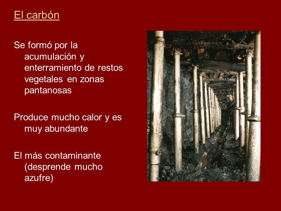 El carbón Se formó por la acumulación y enterramiento de restos vegetales en zonas pantanosas Produce mucho calor y es muy abundante El más contaminan