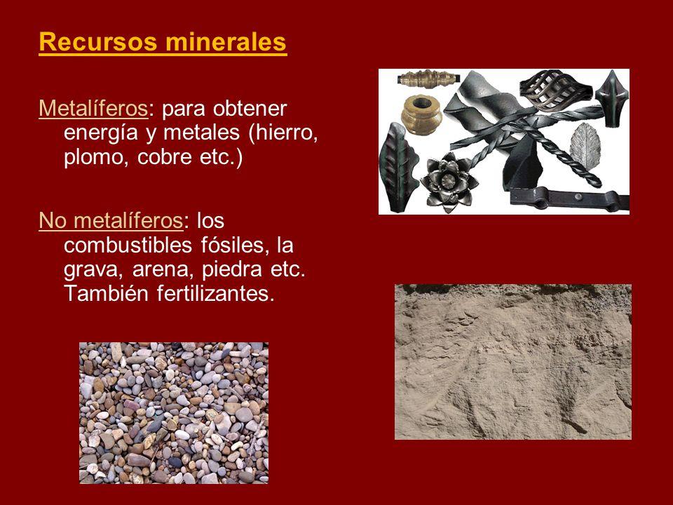 Recursos minerales Metalíferos: para obtener energía y metales (hierro, plomo, cobre etc.) No metalíferos: los combustibles fósiles, la grava, arena,