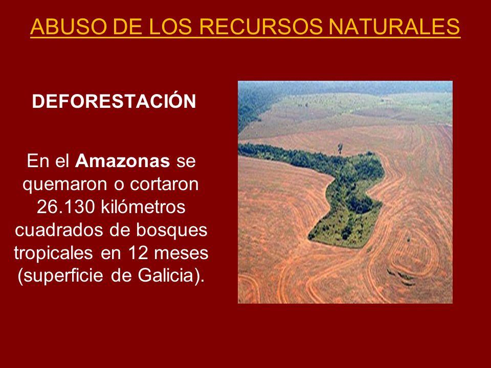 ABUSO DE LOS RECURSOS NATURALES DEFORESTACIÓN En el Amazonas se quemaron o cortaron 26.130 kilómetros cuadrados de bosques tropicales en 12 meses (sup