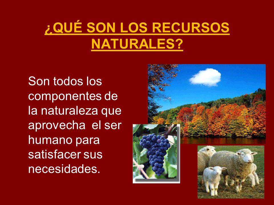 ¿QUÉ SON LOS RECURSOS NATURALES? Son todos los componentes de la naturaleza que aprovecha el ser humano para satisfacer sus necesidades.
