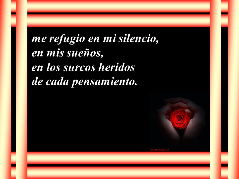 me refugio en mi silencio, en mis sueños, en los surcos heridos de cada pensamiento.