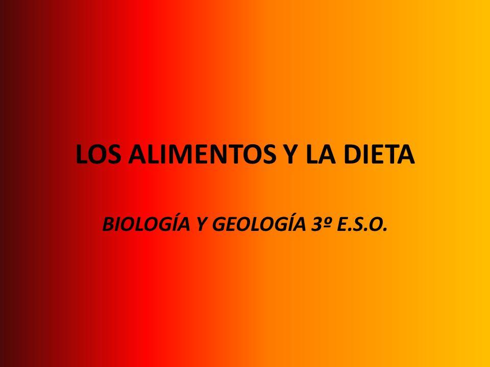 LOS ALIMENTOS Y LA DIETA BIOLOGÍA Y GEOLOGÍA 3º E.S.O.