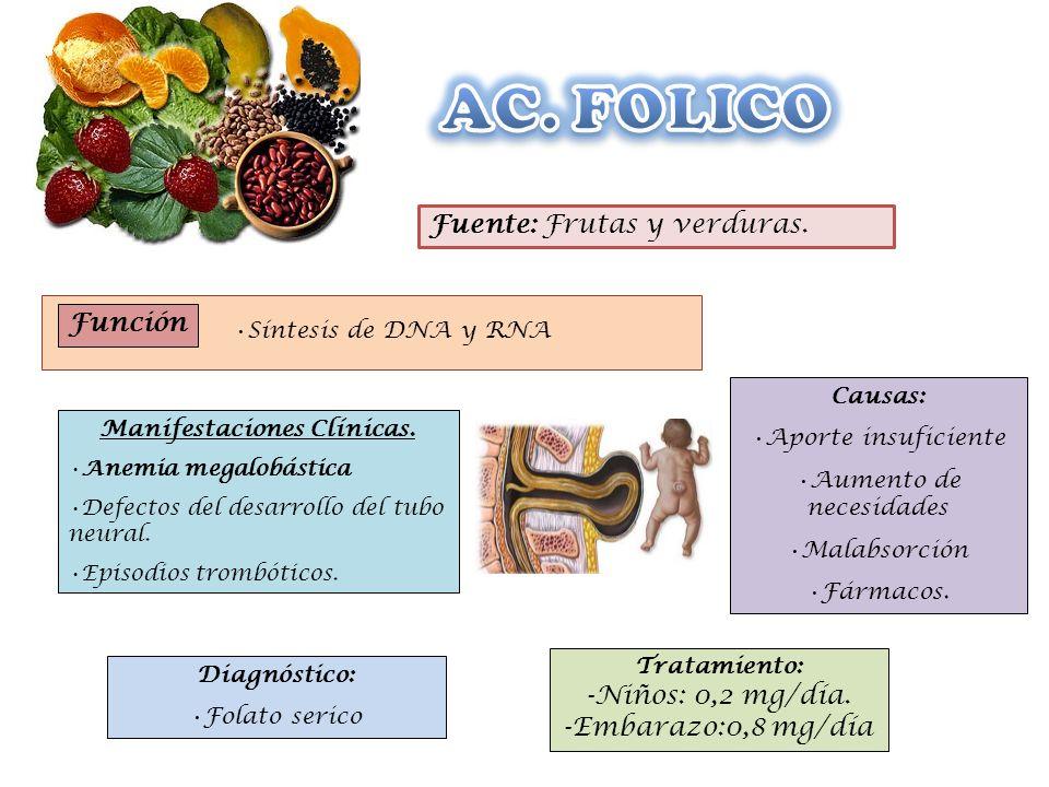 Función Síntesis de DNA y RNA Fuente: Frutas y verduras. Causas: Aporte insuficiente Aumento de necesidades Malabsorción Fármacos. Diagnóstico: Folato