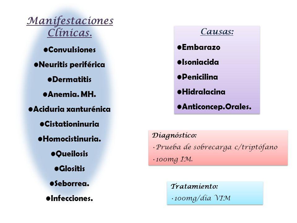 Manifestaciones Clínicas. Convulsiones Neuritis periférica Dermatitis Anemia. MH. Aciduria xanturénica Cistationinuria Homocistinuria. Queilosis Glosi