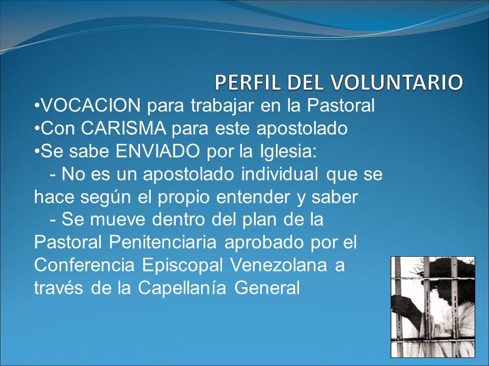 VOCACION para trabajar en la Pastoral Con CARISMA para este apostolado Se sabe ENVIADO por la Iglesia: - No es un apostolado individual que se hace se