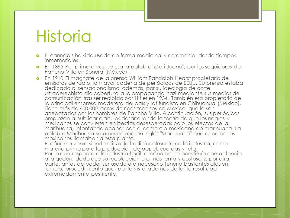 Historia El cannabis ha sido usado de forma medicinal y ceremonial desde tiempos inmemoriales. En 1895 Por primera vez, se usa la palabra